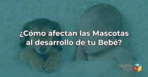 ¿Cómo afectan las mascotas al desarrollo de tu Bebé?