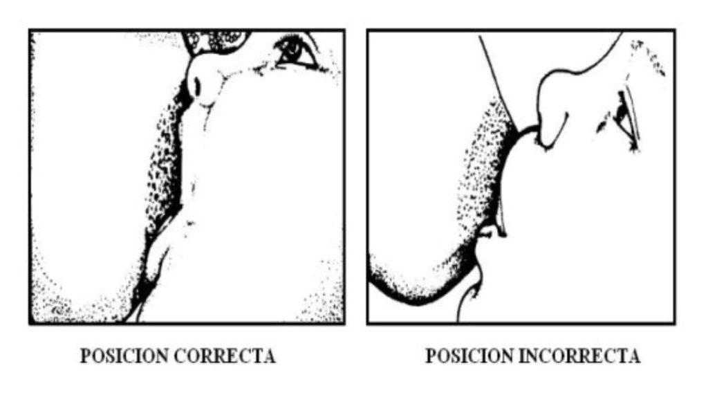 forma correcta de dar el pecho a tu bebé